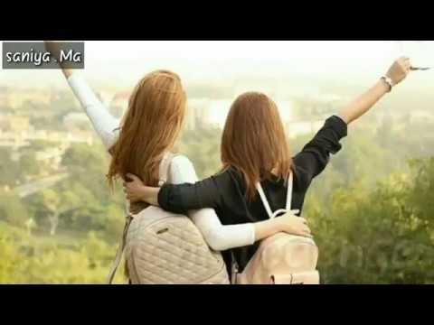 Download Teri jeet meri jeet female version   Ye Dosti Ham nhi thodee   Friendship day special❤️ PINK CITY