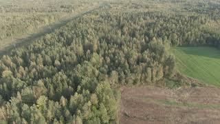Квадрокоптер заснял нереальные пейзажи! Нетронутая красота дикой природы.