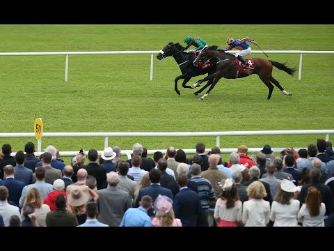 Harzand - Dubai Duty Free Irish Derby (Group 1) - 2016