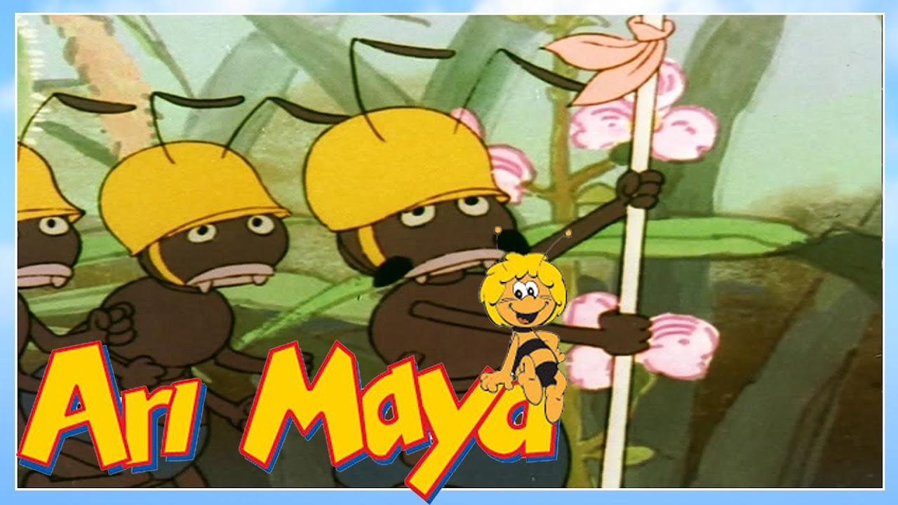 Arı Maya bölüm 4