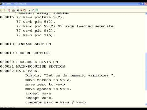 COBOL 6 Sign and Decimals
