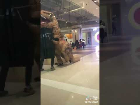 Now we are back to ancient times... Trex shows at shipping mall.