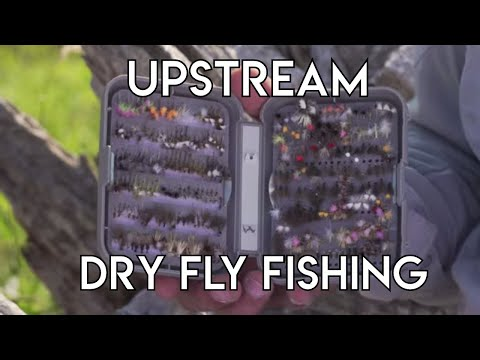 Upstream Dry Fly Fishing | How To