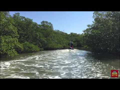 O You Must Go foi até Marco Island, na incrível Florida's Paradi...
