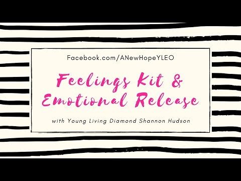 Feelings Kit and Emotional Release: Getting Balanced