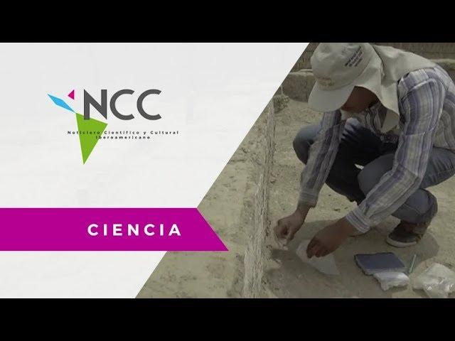 Descubrimiento arqueológico mochica - PER - AFP  / Ciencia / NCC 26 / 12.02.18