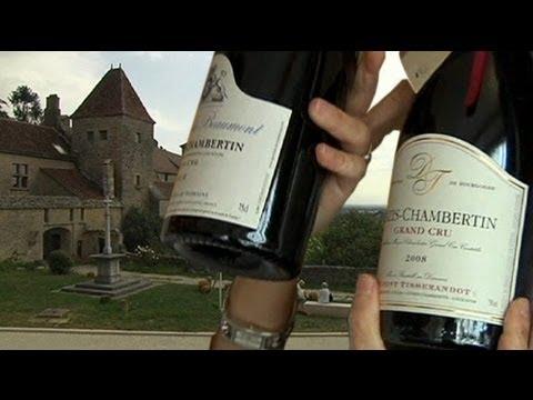 Chinesischer Millionär kauft französisches Weingut