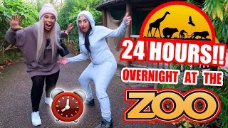 OVERNIGHT IN A ZOO ⏰  🚨  24 HOUR FORT CHALLENGE (GONE WRONG)