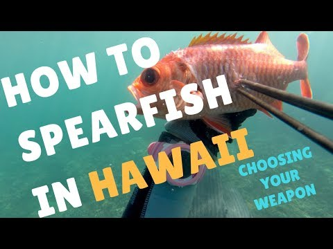 SPEARFISHING HAWAII BASICS: Starting With A