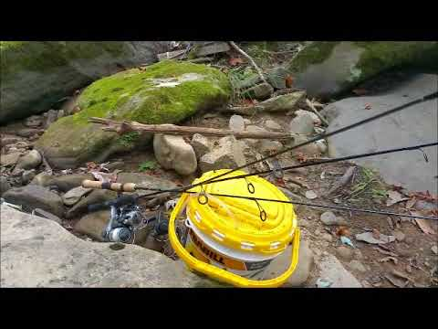 Freshwater Fishing at Cowanshannock Creek,Kittaning Pa.