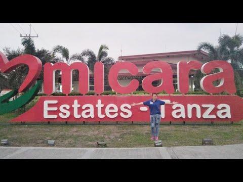 HOME SWEET HOME | MICARA ESTATE TANZA