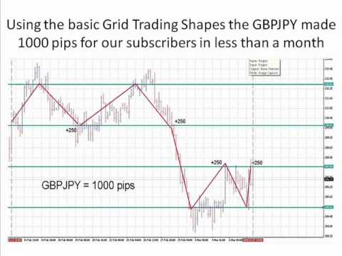 Forex 2000 pips a month