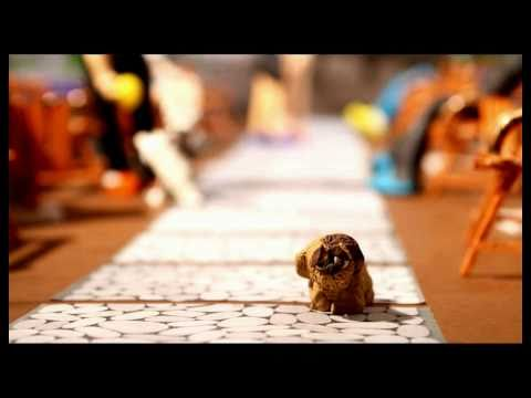 Animal Rights Stop Motion - Full HD