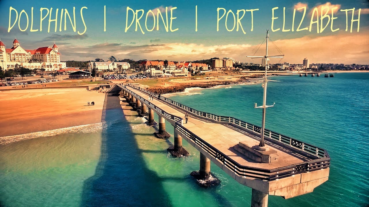 Incredible drone footage of dolphins port elizabeth - What to do in port elizabeth south africa ...