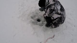 №2 Зимняя Любительская Рыбалка. Ловля Окуня на Блесну. Ловля на Жерлицы Зимой