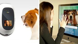 5 AMAZING PET GADGETS YOU MUST HAVE