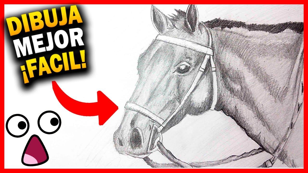 Como Dibujar un Caballo paso a paso [El Dibujante] - YouTube