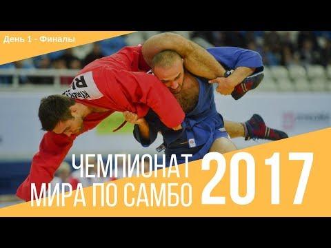 Чемпионат мира по...