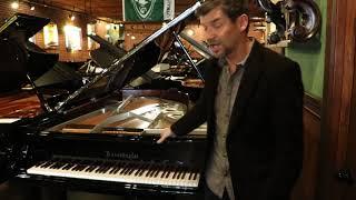 Custom Bosendorfer Grand Piano 214 Chrome For Sale At Classic Pianos Portland