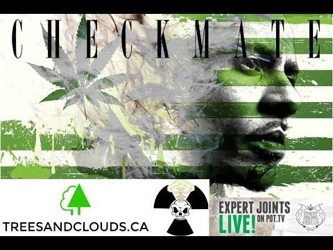 """Expert Joints LIVE!  - """"Check Out That Mushroom Cloud"""""""