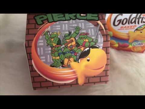Gold Fish Box | Make It With Cricut | Tam's Sweet Life