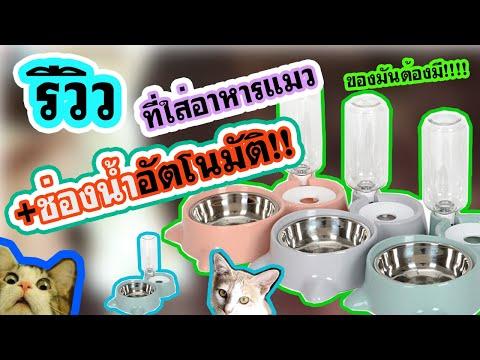 รีวิว ชามใส่อาหารสัตว์เลี้ยง+มีชามน้ำอัตโนมัติด้วยนะ!!!