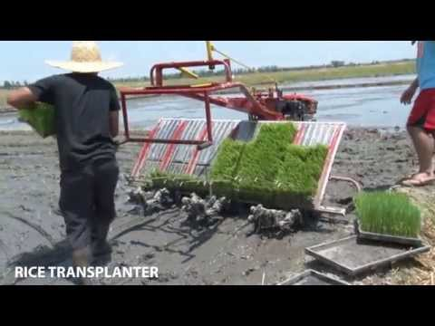 Rice Transplanter (PhilMech)