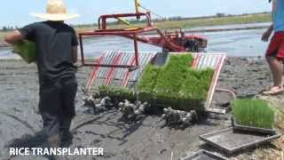 Rice Transplanter (PhilMech)