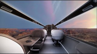 Windowless planes: is this the future of flying?