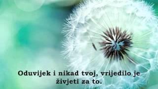 Tose Proeski-Cujes li [ + tekst ]