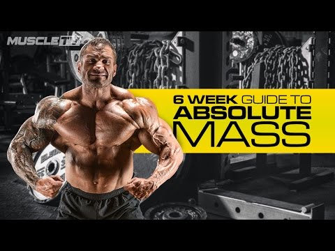 6 WEEKS TO ABSOLUTE MASS   Part 1: Training