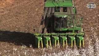 Cotton Picking in North Carolina - Montage of Picker From Above (HD)