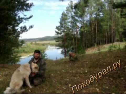 Ловушки для волков своими руками 188