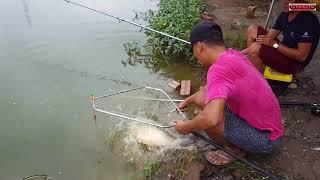 Câu cá  khủng bằng lưỡi câu lục   Big fish