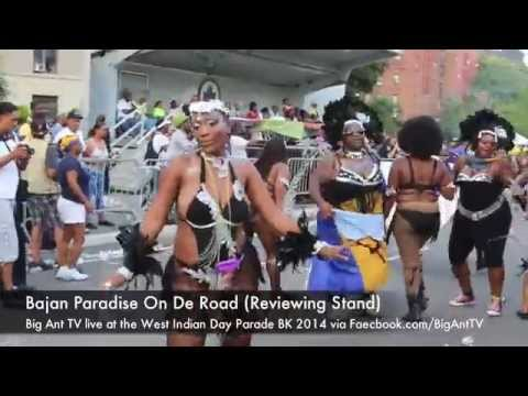 WEST INDIAN DAY PARADE NYC 2014 (Big Ant TV's Sights & Sounds)