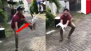 Video Video viral penyiksa kucing akhirnya mereka minta maaf - TomoNews download MP3, 3GP, MP4, WEBM, AVI, FLV November 2018