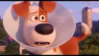 Тайная жизнь домашних животных 2 — Русский трейлер   2019