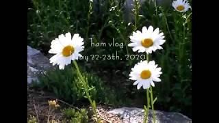 [Vlog] 레트로 캠코더/산요 작티/속초, 원주 여행…