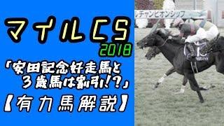 【2018マイルCS】安田記念好走馬と3歳馬は割引!?(有力馬解説)
