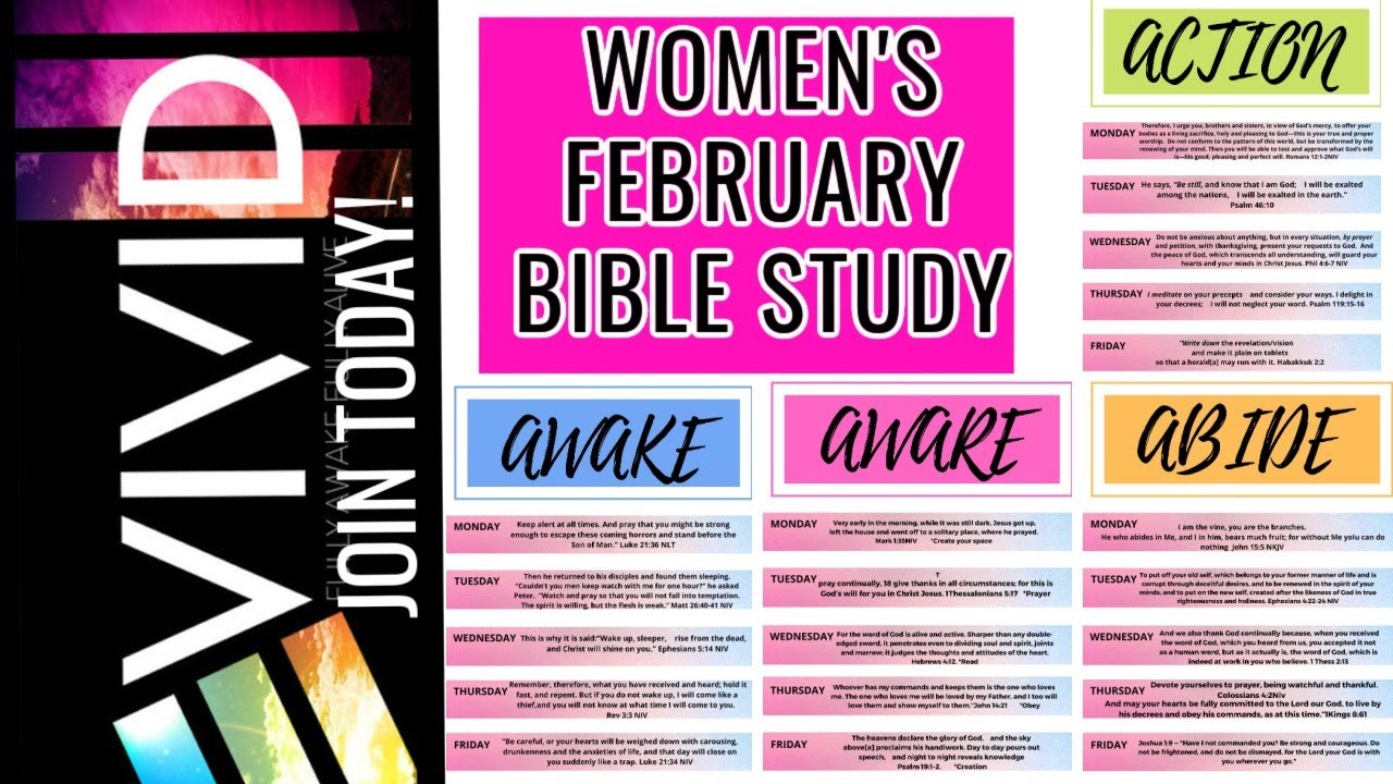 LAUNCHING FEBRUARY STUDY/ VIVID
