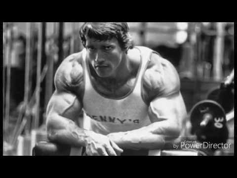 Arnold Schwarzenegger Motivation (2016) Austrian Oak