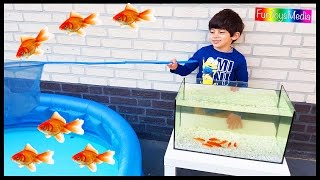 Learn Colors with Fishing Nets for Children and Toddlers | Catching Fish Fun Kids Playing Activity