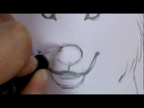how-to-draw-a-wolf-face
