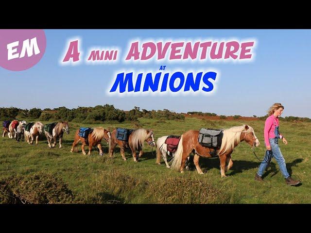 8 Minis go to Minions