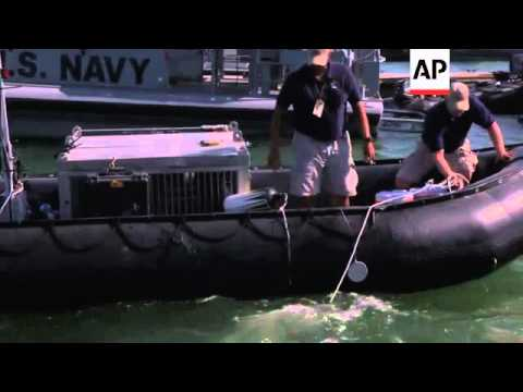 US Navy Sea Lions Show Off Their Protection Skills During Maritime Exercise