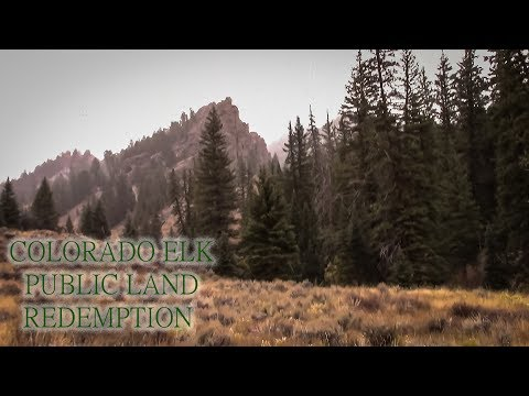 2019 Colorado DIY Public Land Elk Hunt Our Redemption