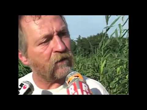 Documentaire sur les OGM : Tous Cobayes ?