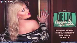 Repeat youtube video Delia - Cineva la usa mea (Lyric Video)