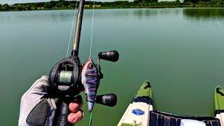 AGGRESSIVE Bass DESTROYS Strange Topwater Lure!!!