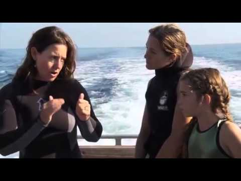 Careers in Diving Trailer from Hammerhead Press